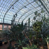 Garfield Park Conservatory _smaller